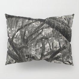 Live Oaks with Spanish Moss, Georgia Pillow Sham
