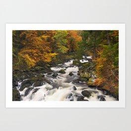 I - River through autumn colours at the Hermitage, Scotland Art Print