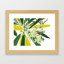 Frangipani charm Framed Art Print