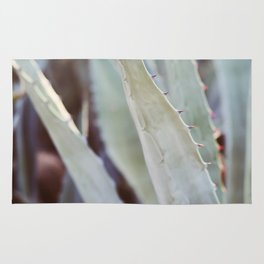 Winter Agave #3 Rug