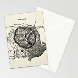Vintage Anatomy The Left Orbit Bone Stationery Cards