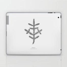 Spruce twig Laptop & iPad Skin