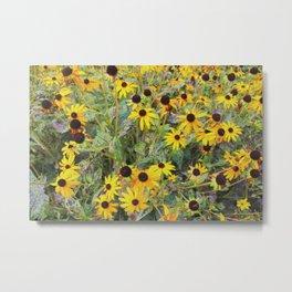 Memories of yellow flowers Metal Print