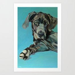 Great Dane Dog Portrait Art Print