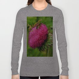 The thistle and a fly Long Sleeve T-shirt