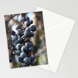 Wild Grapes Stationery Cards