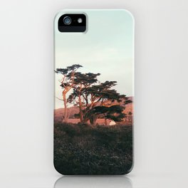 Setting Sun on the Trees iPhone Case