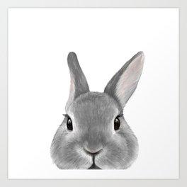 Netherland Dwarf rabbit Grey, illustration original painting print Art Print