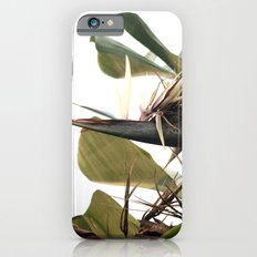 Bird of Paradise Slim Case iPhone 6s
