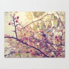Berry Christmas Canvas Print