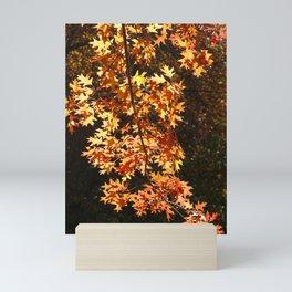 Autumn Leaves Display Mini Art Print