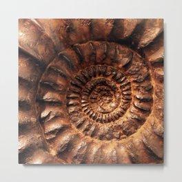 Fossil Metal Print