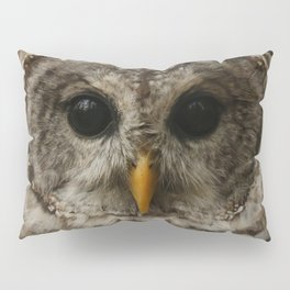 I Only Have Eyes For You Pillow Sham