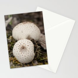 Puff Ball Stationery Cards