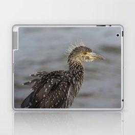 Juvenile Yellow Crowned Night Heron Laptop & iPad Skin
