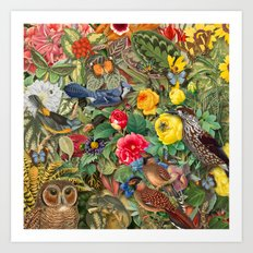 Birds Insects Plants Art Print