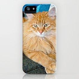 Boppy iPhone Case