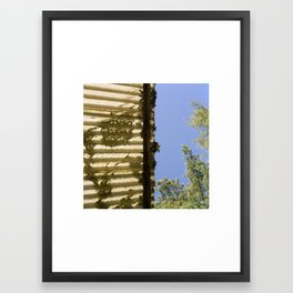 Leaves on Corrugated Roof with Tree Framed Art Print