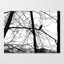 The Raven #2 Canvas Print