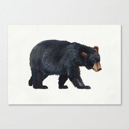 Watercolour Black Bear Drawing Canvas Print