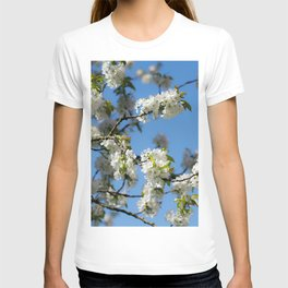 Cherry blossoms time in the garden T-shirt