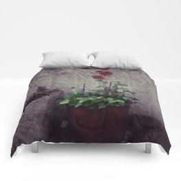 Jeonong-dong Comforters
