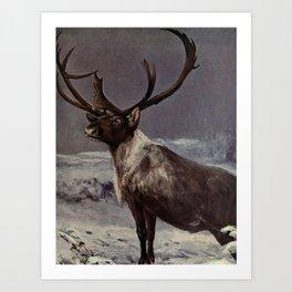 Vintage Reindeer Painting (1909) Art Print