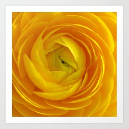 Yellow flower 192 Art Print