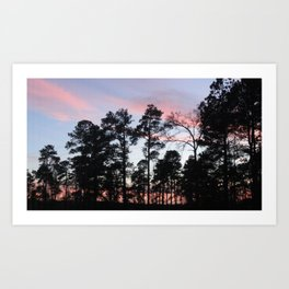Pastel Sunset Black Trees Art Print
