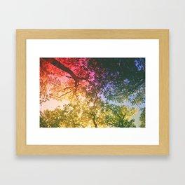 roygbv Framed Art Print