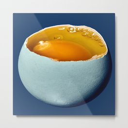 Egg Moon Metal Print
