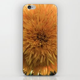 Color Burst iPhone Skin