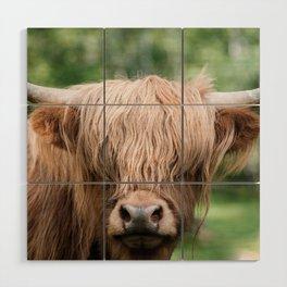 Portrait of a cute Scottish Highland Cattle Wood Wall Art