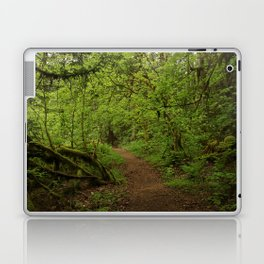 The Road to Faerie Laptop & iPad Skin