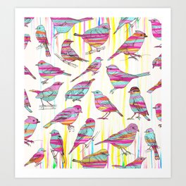 Birds Seen Rainbow Art Print
