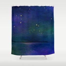 Winter lights Shower Curtain
