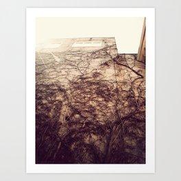 Wall Crawler Art Print
