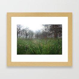 Bokeh Dew Drops Framed Art Print