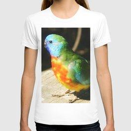 Scarlet-chested Parrot ( splendida ) T-shirt
