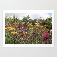 Botanical Garden Colour Art Print