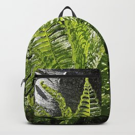 Ferns - leaves and shadows - against birch bark Backpack