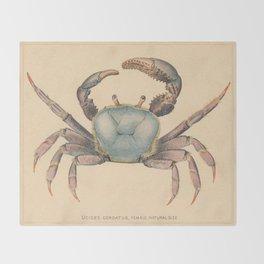 Vintage Mangrove Crab Illustration (1902) Throw Blanket