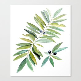 Leaves Berries Sage Green Turquiose Nature Art Floral Watercolor Canvas Print