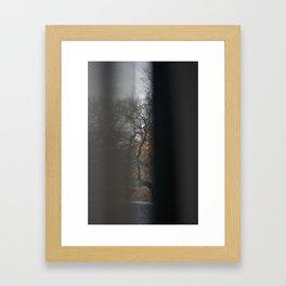 Trees #8 Framed Art Print