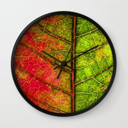 red and green leaf Wall Clock
