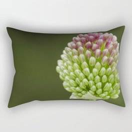 Drumstick Allium Rectangular Pillow