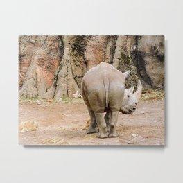 Rhino butt Metal Print