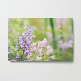 Violet Bluebell Flower Metal Print