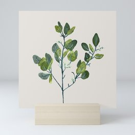Eucalyptus Branch Mini Art Print