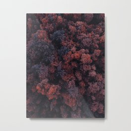 Red Forest | Aerial Photography  Metal Print